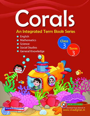 Corals Class 3 - Term 3